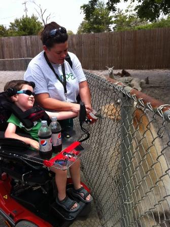 Zoo robin and max with llama